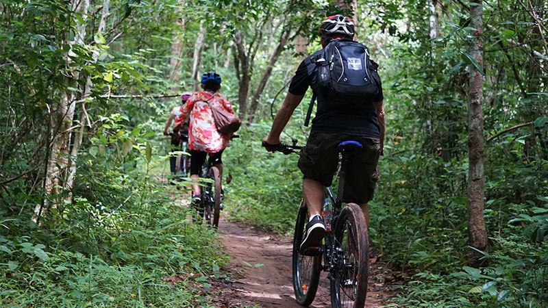 Cycling tour in cambodia